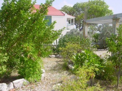 museum garden 2002a|211