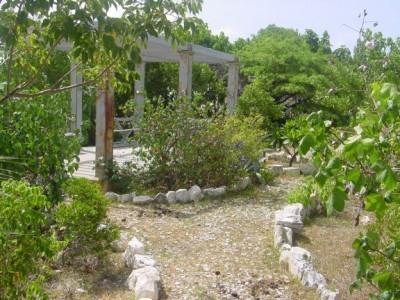 museum garden 2002b|212